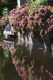 Jardim da margem no outono Fotografia de Stock