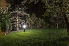 Jardim da noite fotos de stock royalty free