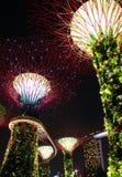 Jardim da noite pela baía tree2 Foto de Stock Royalty Free