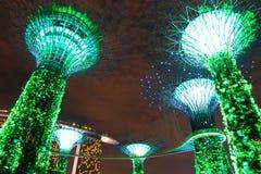 Jardim da noite pela baía tree4 Fotografia de Stock