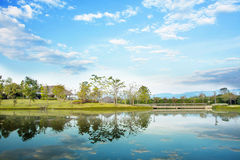 Jardim da paisagem Foto de Stock Royalty Free