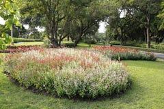 Jardim da paisagem Fotos de Stock Royalty Free