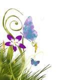 Jardim da pintura da borboleta Foto de Stock