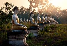 Jardim das Budas Fotografia de Stock