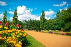 Jardim das flores Foto de Stock