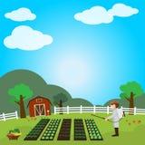 Jardim das frutas e legumes Fotografia de Stock Royalty Free