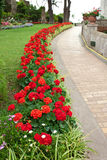 Jardim de Augustus Capri, Itália foto de stock