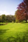 Jardim de Autum foto de stock
