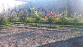 Jardim de Braga, flores de Πορτογαλία στοκ εικόνα