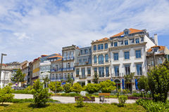 Jardim de Carlos Alberto in City of Porto, Portugal Royalty Free Stock Image