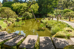 Jardim de chá japonês Foto de Stock