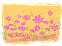 Jardim de flor cor-de-rosa Imagem de Stock Royalty Free