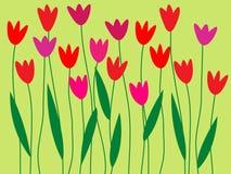 Jardim de flor da mola Imagem de Stock