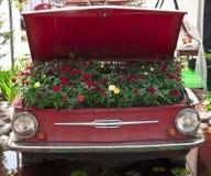 Jardim de flor no carro Foto de Stock Royalty Free