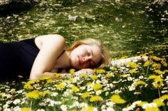 Jardim de flores Fotografia de Stock Royalty Free