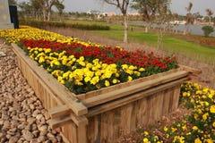 Jardim de flores fotografia de stock