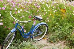 Jardim de flores azul da bicicleta Fotografia de Stock Royalty Free