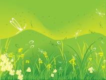 Jardim de flores da mola com montes   ilustração stock