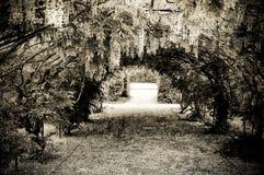 Jardim de Grunge fotografia de stock royalty free