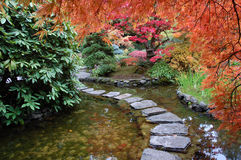 Jardim de Janpanese Foto de Stock Royalty Free