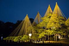 Jardim de Kenrokuen e os cones da corda fotografia de stock