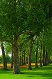 Jardim de Kensington em Londres. imagem de stock