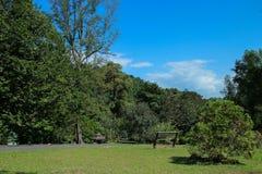 Jardim de Malásia Penang Botanica Foto de Stock Royalty Free