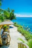 Jardim de neglig?ncia com c?us azuis fotografia de stock royalty free