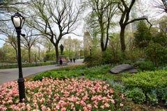 Jardim de New York, Central Park Foto de Stock Royalty Free