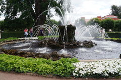 Jardim de Peterhof Imagem de Stock Royalty Free