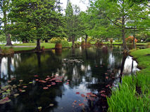 Jardim de Queenstown imagens de stock
