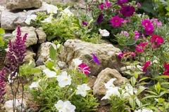 Jardim de rocha bonito Fotografia de Stock Royalty Free