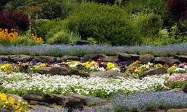 Jardim de rocha com perennials de florescência foto de stock royalty free
