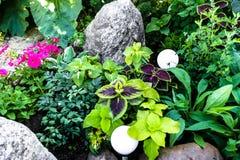 Jardim de rocha com suas próprias mãos - jardins ornamentais fotografia de stock royalty free