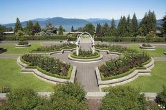 Jardim de rosas Fotos de Stock Royalty Free