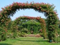 Jardim de rosas Foto de Stock Royalty Free