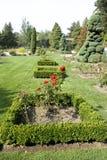 Jardim de rosas imagens de stock royalty free
