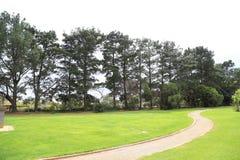 Jardim de rosas do estado de Vitoria em melbourne, Austrália Fotos de Stock Royalty Free