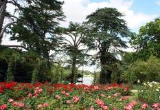 Jardim de rosas do palácio de Blenheim em Woodstock, Inglaterra Imagem de Stock Royalty Free