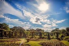 Jardim de rosas em Darmstadt no estilo inglês clássico Fotos de Stock Royalty Free