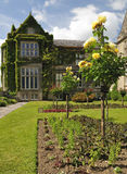 Jardim de rosas irlandês Imagem de Stock Royalty Free