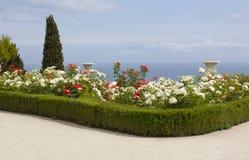 Jardim de rosas na costa de mar Imagens de Stock