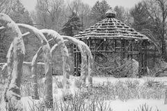 Jardim de rosas no inverno Imagens de Stock Royalty Free