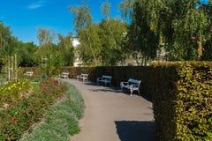 Jardim de rosas no monte de Petrin Fotografia de Stock