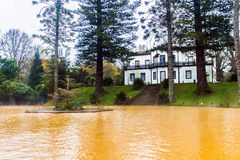 Jardim de Terra Nostra, ilha de Miguel do Sao, os Açores Imagem de Stock