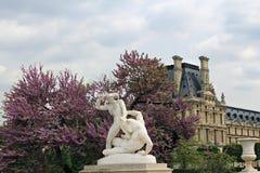 Jardim de Tuileries em Paris. fotografia de stock royalty free