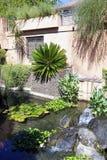 Jardim decorativo do bambu de Anduze da bacia Imagem de Stock