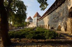 Jardim dinamarquês do ` s do rei em Tallinn, Estônia Imagens de Stock
