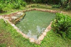 Jardim do Ίντεν φυσικό νερό λιμνών Στοκ Εικόνες