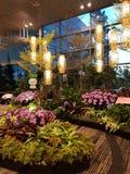 Jardim do aeroporto de Singapura fotos de stock royalty free
